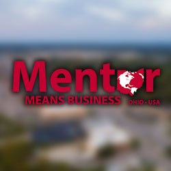 Mentor Means Business