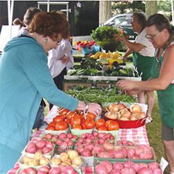 Mentor Farmers Market shoppers