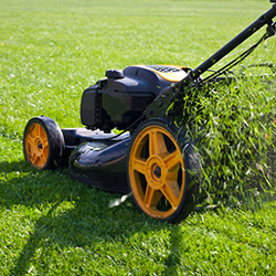 Is A Landscaping Company An Essential Business City Of Mentor Ohio