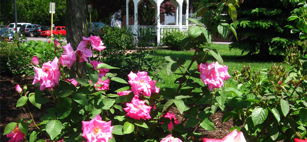 mentor-commemorative-rose-garden