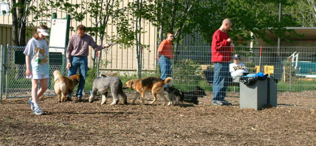 mentor-dog-park